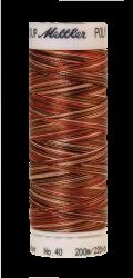 Daudzkrāsu izšūšanas diegi Poly Sheen Multi (krāsa 9302)