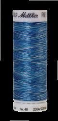 Daudzkrāsu izšūšanas diegi Poly Sheen Multi (krāsa 9605)