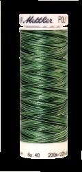 Daudzkrāsu izšūšanas diegi Poly Sheen Multi (krāsa 9805)