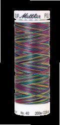 Daudzkrāsu izšūšanas diegi Poly Sheen Multi (krāsa 9916)