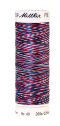 Daudzkrāsu izšūšanas diegi Poly Sheen Multi (krāsa 9918)