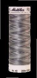 Daudzkrāsu izšūšanas diegi Poly Sheen Multi (krāsa 9920)