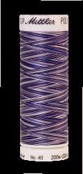 Daudzkrāsu izšūšanas diegi Poly Sheen Multi (krāsa 9921)